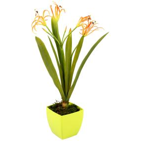 Orchidee im Topf, orange, 60 cm