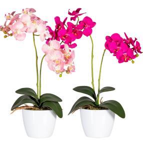 Orchideen, pink und rosé, 50 cm, 2er Set