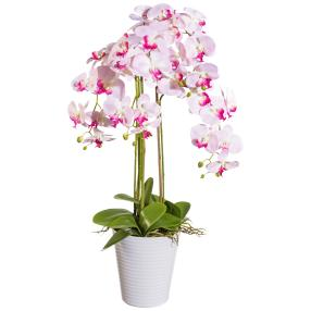 XXL-Orchidee rosa, im Dekotopf