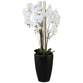 Orchideenarrangement weiß in Vase, XXL, 120 cm
