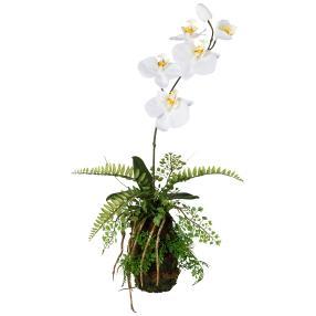 Orchideen-Farn-Arrangement, weiß, 48 cm