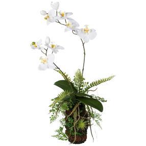 Orchideen-Farn-Arrangement, weiß, 57 cm