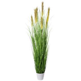 Grasbusch im weißen Topf, 180 cm