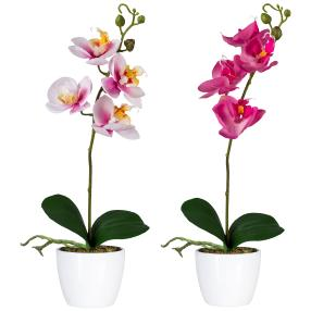 Orchideen im Keramiktopf, rosa/fuchsia, 2er Set