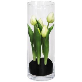 Tulpe im Glas, mit Erdballen, weiß, 23 cm