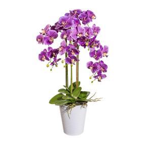 XXL-Orchidee lila, inkl. Dekotopf, 94 cm