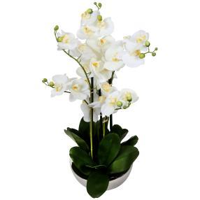 XXL-Orchidee weiß, inkl. Keramikschale, 60 cm