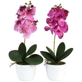 Orchideen im Keramiktopf, lila/flieder, 2er Set