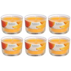 BOLSIUS Duftkerzen, Mango, 6er Set