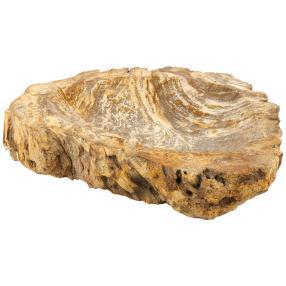 Schale versteinertes Holz, 200 - 250 mm