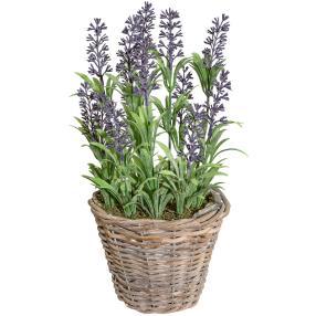 Lavendelbusch im Weidenkorb, 30 cm