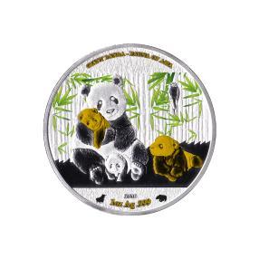 1000 FRCS Giant Panda B&B