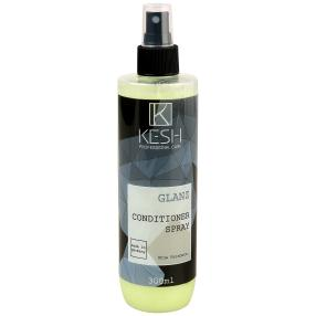 KESH GLANZ Conditioner Spray