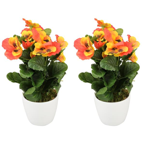 Stiefmütterchen orange im Keramiktopf 25 cm 2erSet
