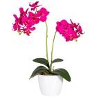 Orchideen, pink und rosé, 50 cm, 2er Set - 68420100000 - 2 - 140px