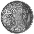 Asiatischer Tiger Prestigeset - 101297500000 - 3 - 140px