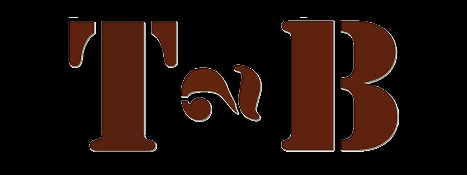 T2B-Ledertaschen